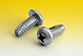 Phillips Round Thread Cutting Screws Type F