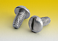 Slotted Round Thread Cutting Screws Type F
